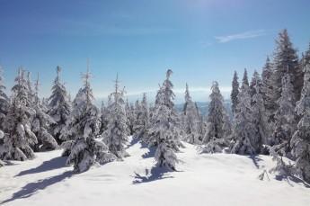 Szczyrk Atrakcja Stacja narciarska Szczyrkowski